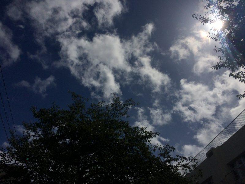 東京の片田舎から台風は去ったけど